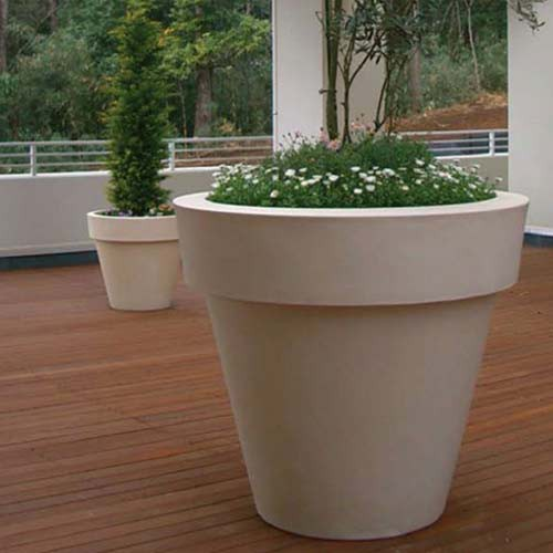 Roma medium for Plantas para macetas grandes de exterior