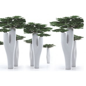 Missed Tree II