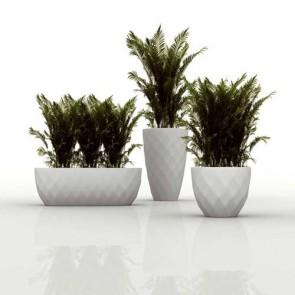 Jardinera Vases